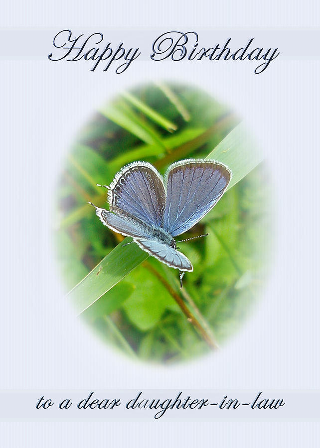 Daughter In Law Birthday Card Eastern Tailed Blue Butterfly – Birthday Cards for Daughter in Law