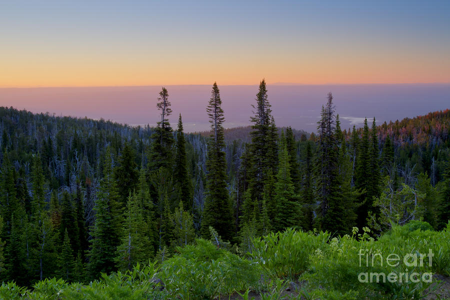 Idaho Photograph - Dawn Colors by Idaho Scenic Images Linda Lantzy