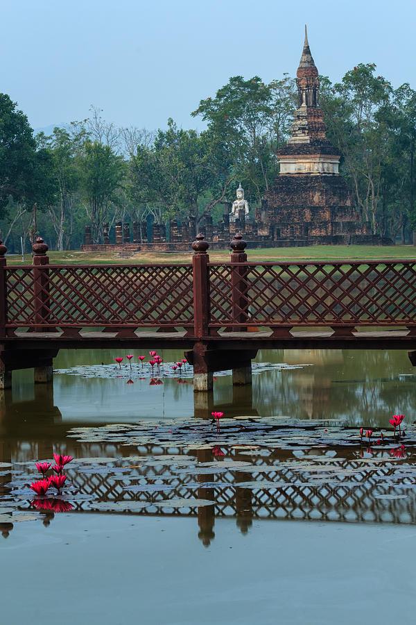 Thailand Photograph - Dawn In The Park by Thomas  von Aesch