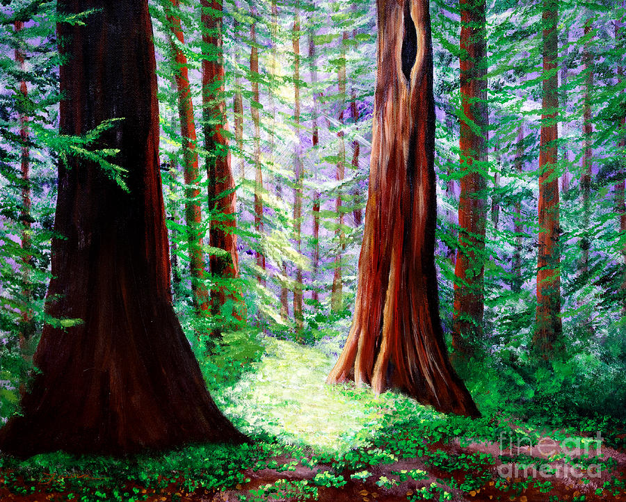 Daybreak In The Redwoods Painting by Laura Iverson Redwood Tree Painting