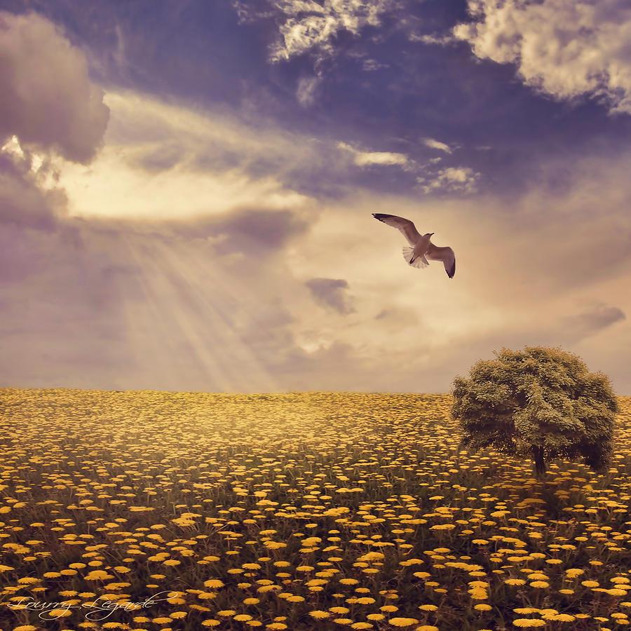 Daydream Photograph - Daydream by Lourry Legarde