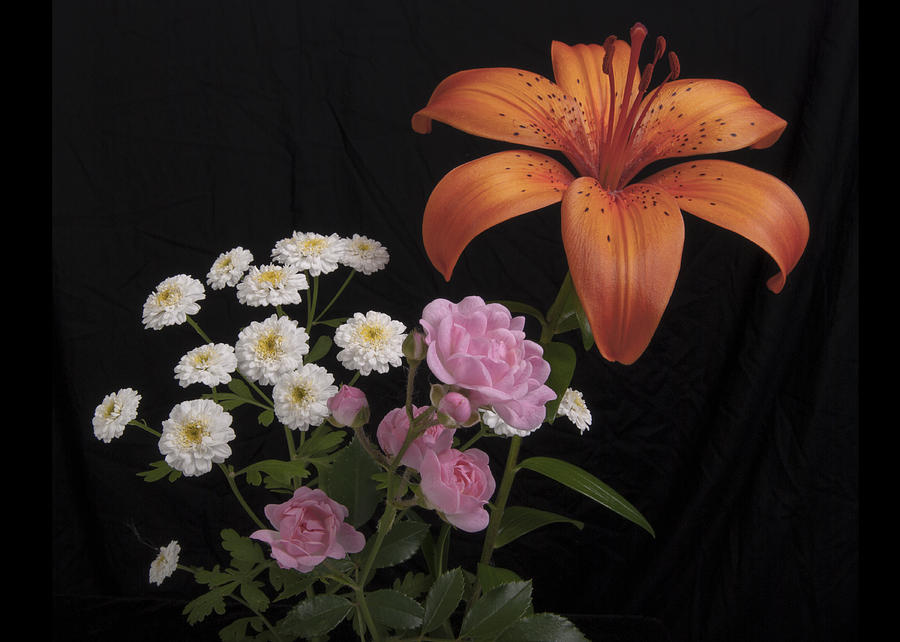 Orange Day Photograph - Daylily And Roses by Michael Peychich
