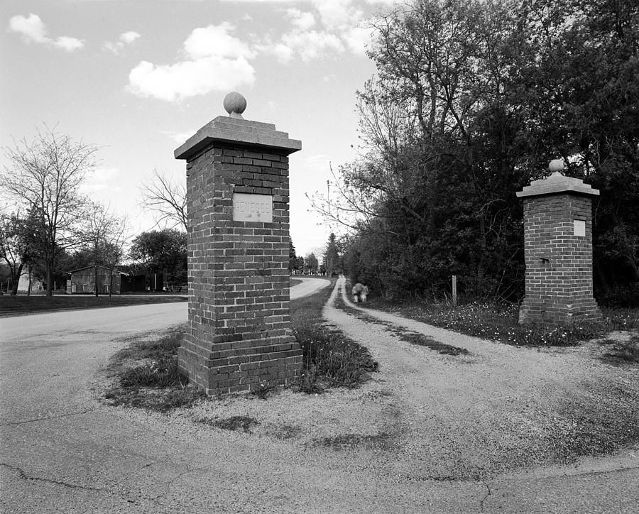 19th Century Farming Photograph - Dead End by Jan W Faul