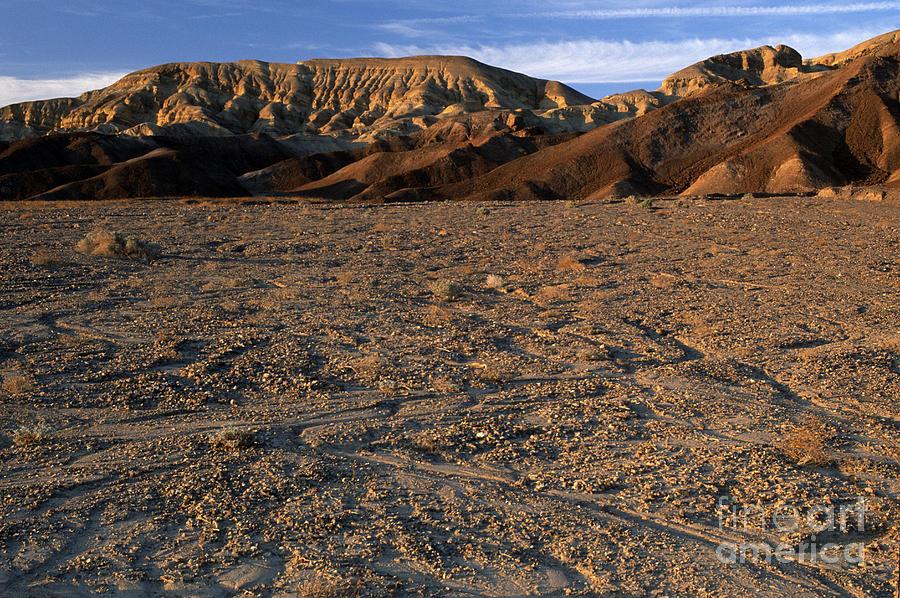 Sandra Bronstein Photograph - Death Valley by Sandra Bronstein