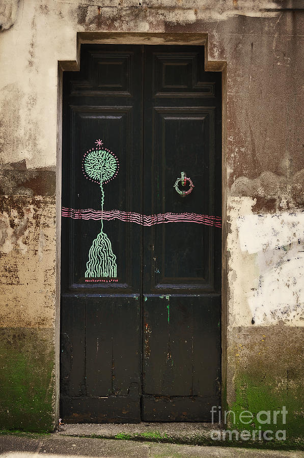 Decorated Photograph - Decorated Door by Mary Machare