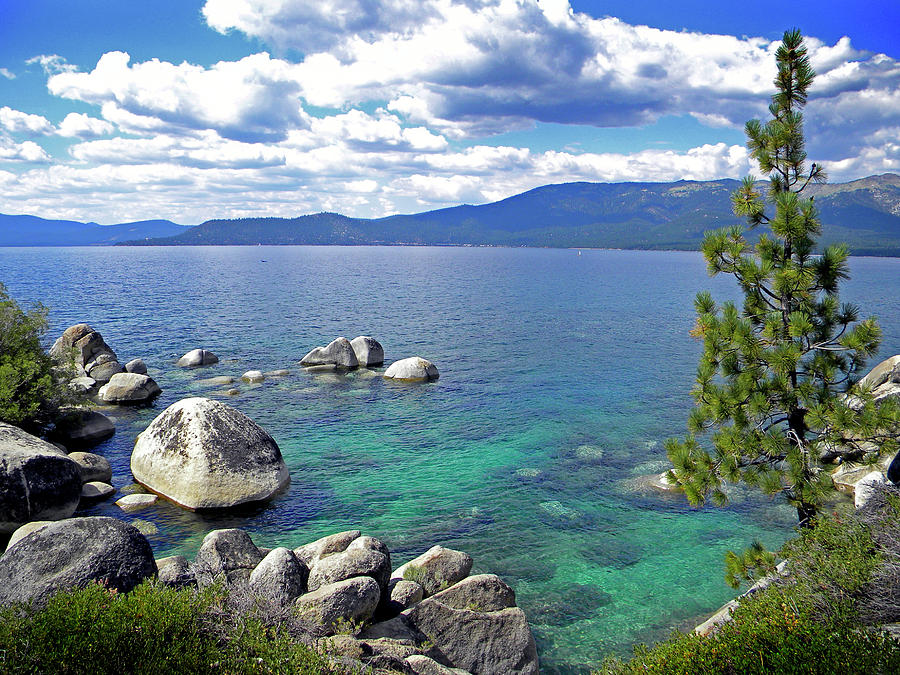 Lake Tahoe Photograph - Deep Waters Lake Tahoe by Frank Wilson