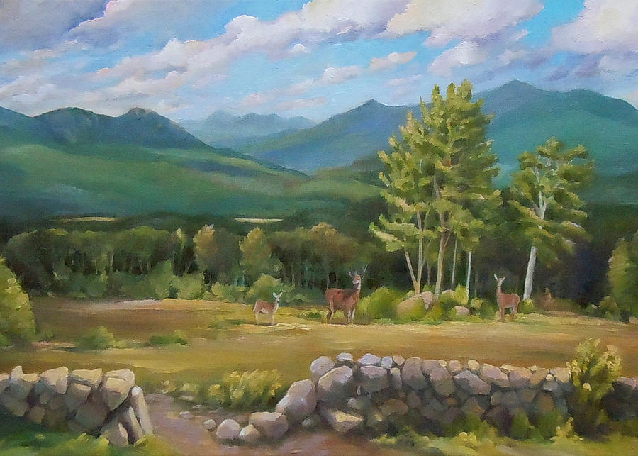 Deer in White Mountains TWO by Nancy Griswold