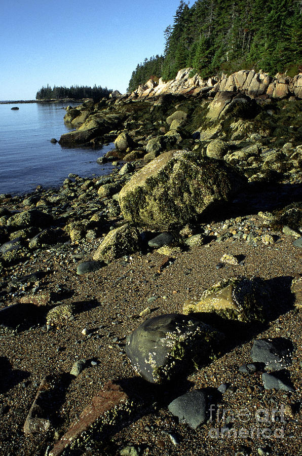 Deer Isle Photograph - Deer Isle And Barred Island by Thomas R Fletcher