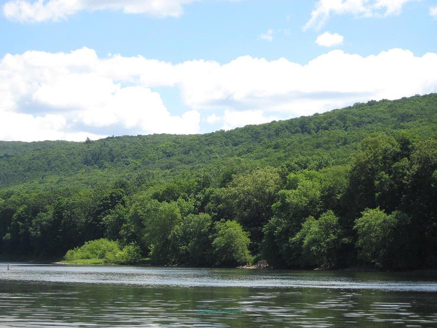 Delaware Water Gap Scenery Photograph By Sonali Gangane
