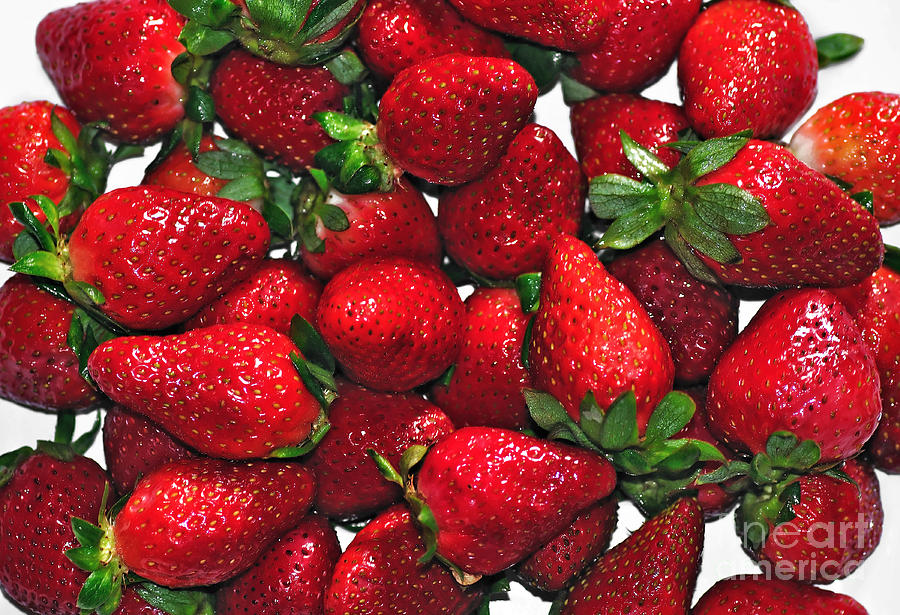 Strawberries Photograph - Deliciously Sweet Strawberries by Kaye Menner