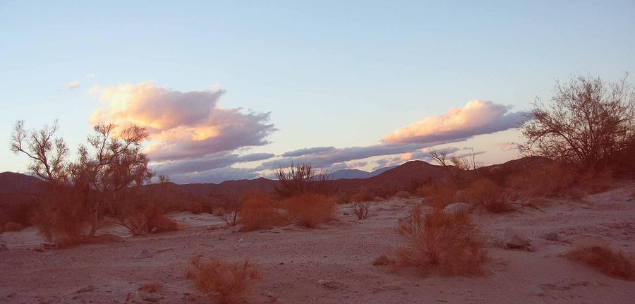 Nature Photograph - Desert and Sky by Naxart Studio