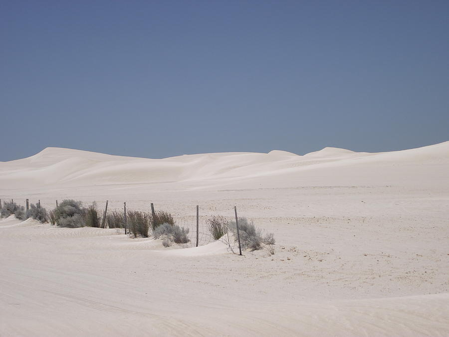 Landscape Photograph - Desert Sand by Coral Dudley