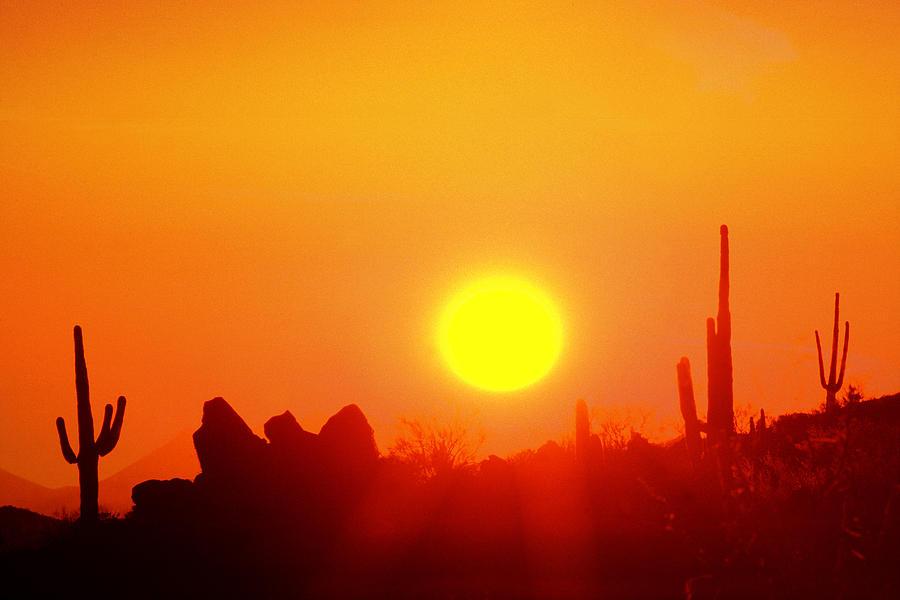 Desert Photograph - Desert Sun by Robert Wiley