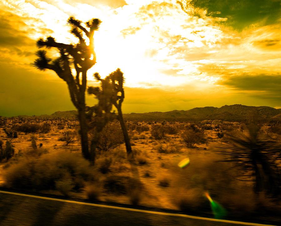 Road Photograph - Desert Sunset by Aurica Voss