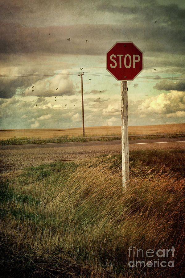Atmosphere Photograph - Deserted Red Stop Sign On The Prairies by Sandra Cunningham