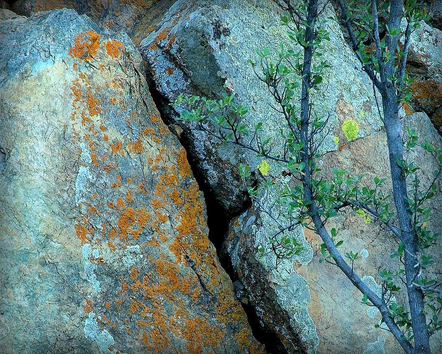 Rocks Photograph - Deserts Reward.. by Al  Swasey