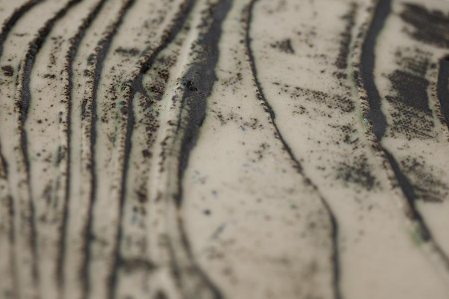 Nature Ceramic Art - Destruction  by Andrew Tuff