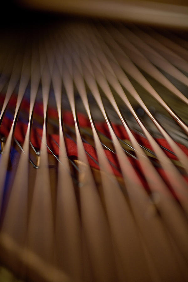 Vertical Photograph - Detail Of Piano Strings by Christopher Kontoes