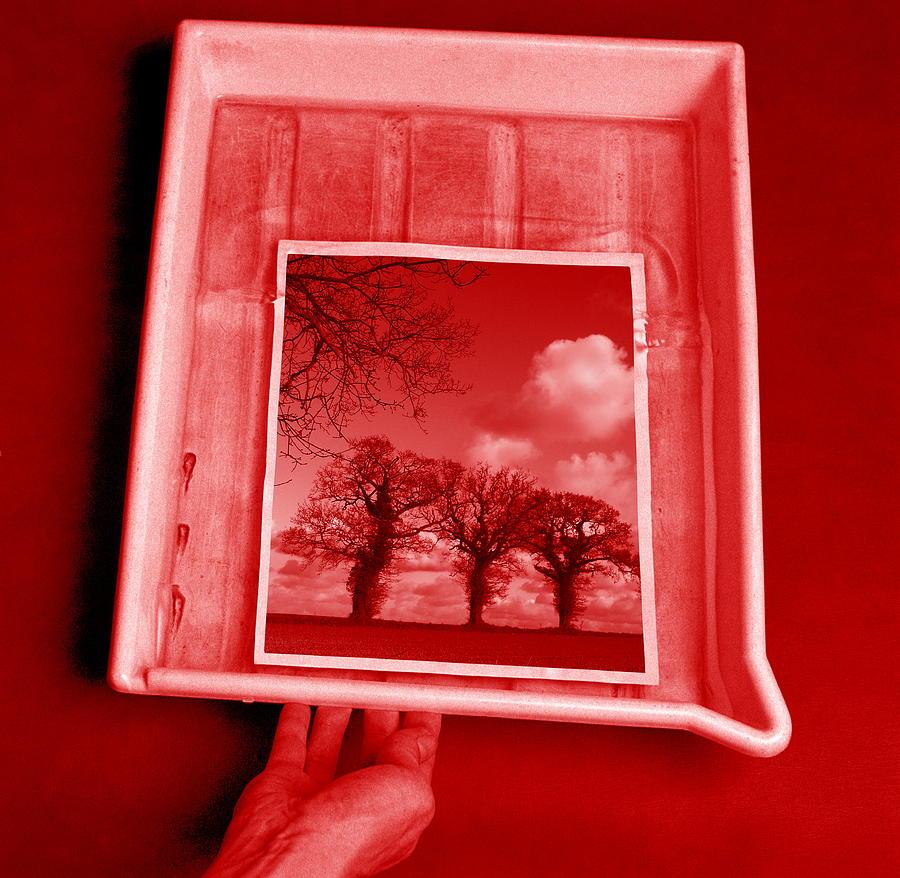 Photograph Photograph - Developing Photograph by Victor De Schwanberg