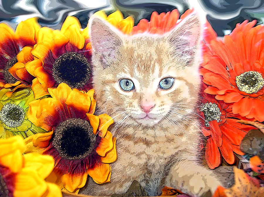 Di Milo Photograph - Di Milo - Sun Flower Kitten With Blue Eyes - Kitty Cat In Fall Autumn Colors With Gerbera Flowers by Chantal PhotoPix