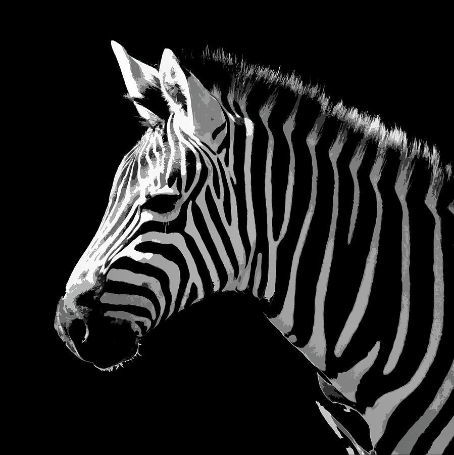 Digital Art Zebra Photograph by Pierre Leclerc Photography