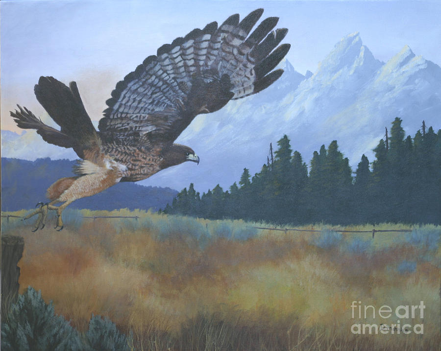 Hawk Painting - Dinner Time by Diana Mahnke