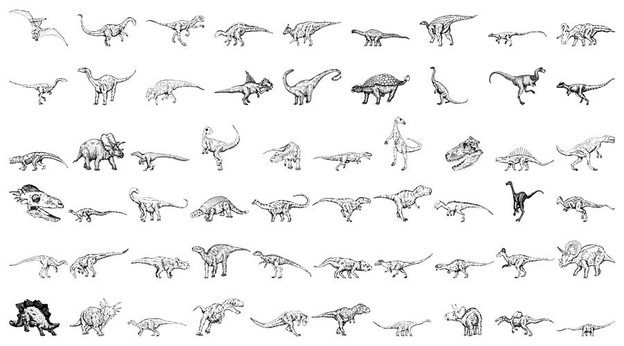 Dinosaur Collection Drawing by Karl Addison