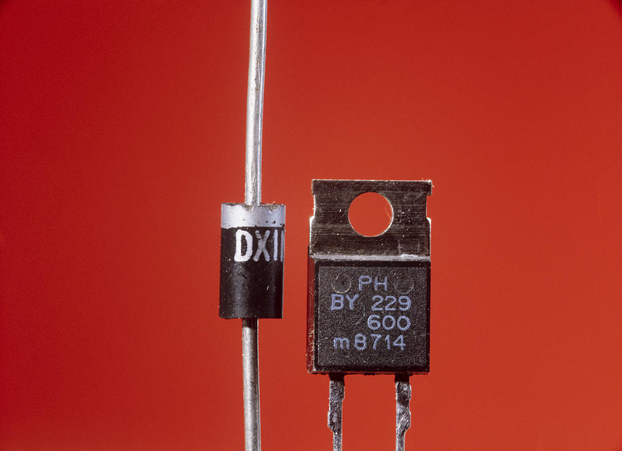 Electronic Component Photograph - Diodes by Andrew Lambert Photography