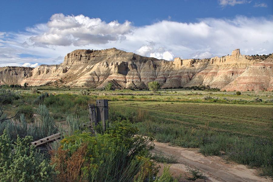 Utah Photograph - Dirt Road Wanderings by Christine Annas