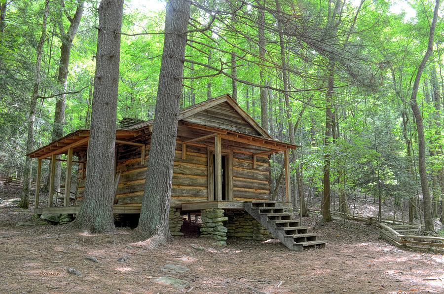 Cabin Photograph - Disharoon Cabin by Bob Jackson