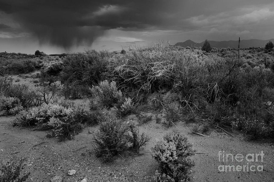 Landscape Photograph - Distant Shower by Ron Cline