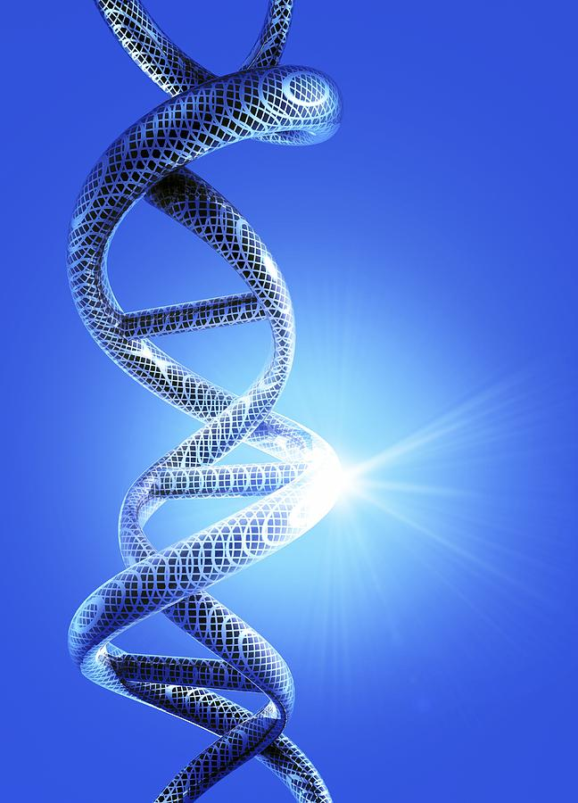 Dna Photograph - Dna Helical Structure, Artwork by Victor Habbick Visions