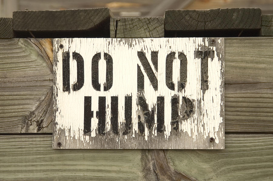 Train Photograph - Do Not Hump by Mike McGlothlen