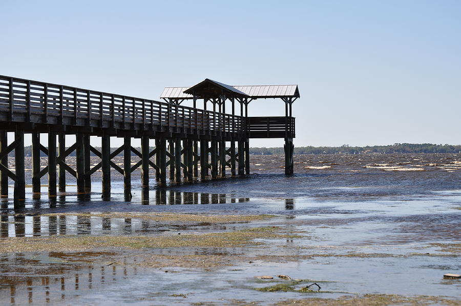 Dock Photograph - Dock At Low Tide by Tiffney Heaning