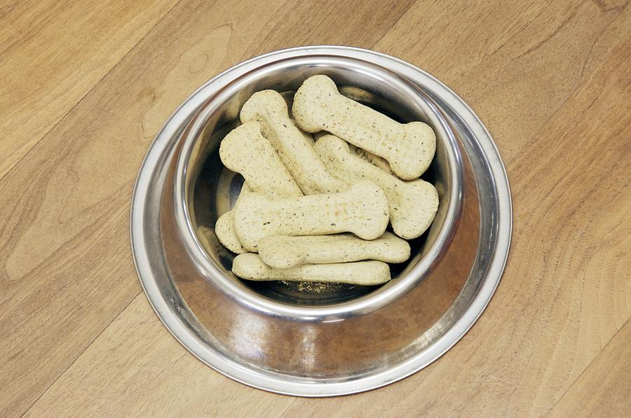 Food Photograph - Dog Biscuits by Johnny Greig
