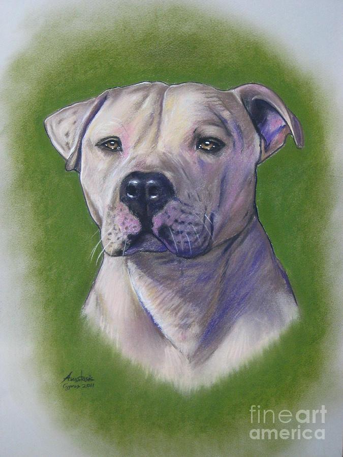Dog Pastel - Dog Portrait by Anastasis  Anastasi