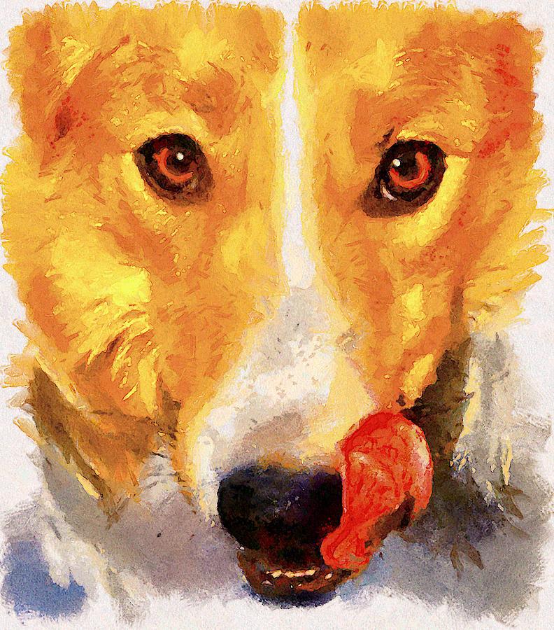 Dog Digital Art - Dog Portrait by Yury Malkov