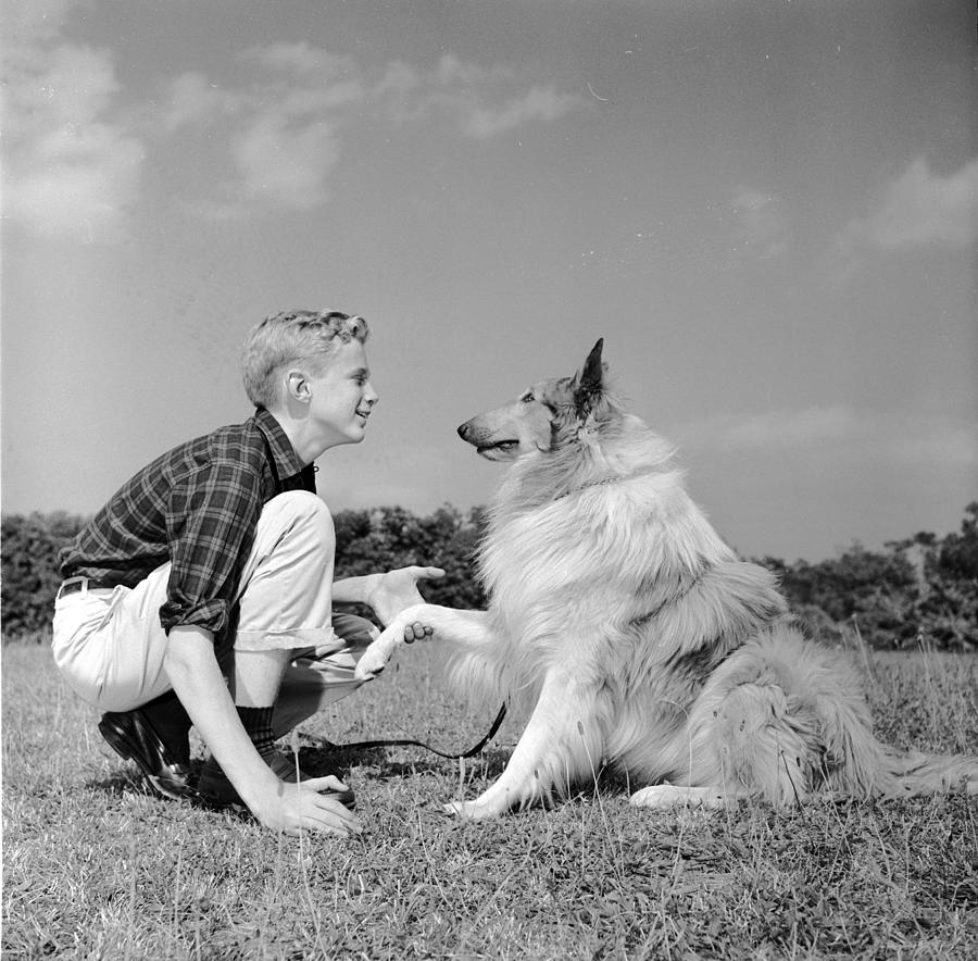 Teenager Photograph - Dog Training by Three Lions