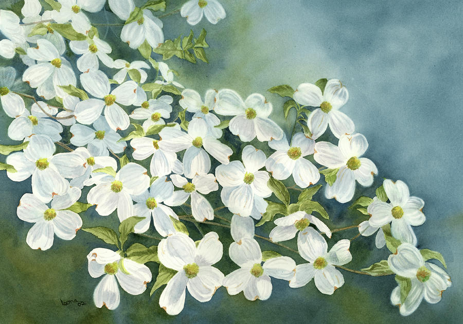Dogwood In Bloom Painting By Leona Jones