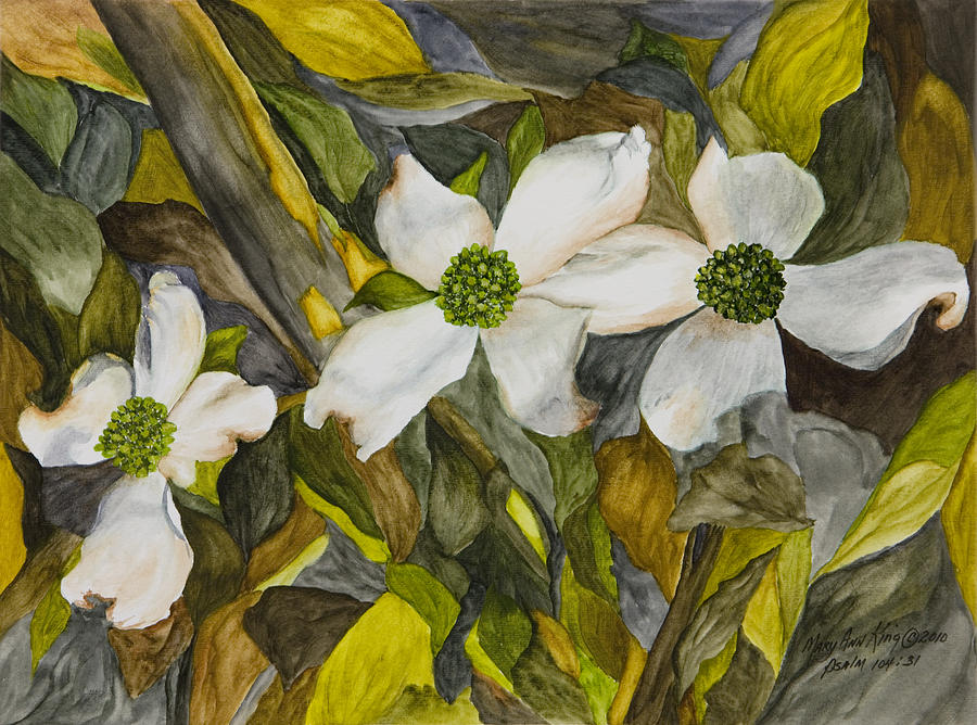 White Dogwood Painting - Dogwoods by Mary Ann King