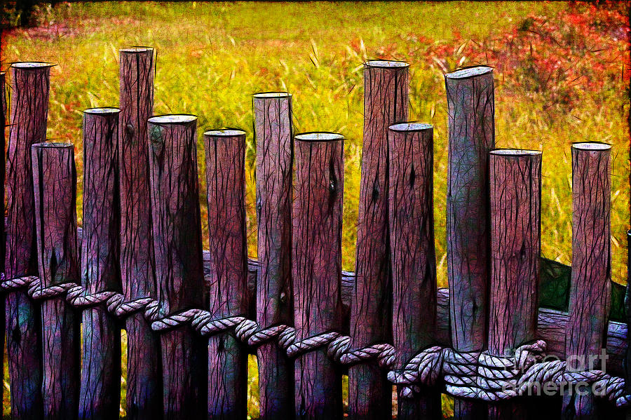 Fence Photograph - Dont Fence Me In by Judi Bagwell
