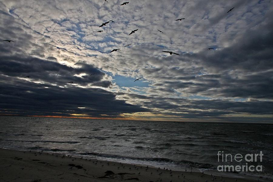 Clouds Photograph - Dotties Flight by Scott Allison