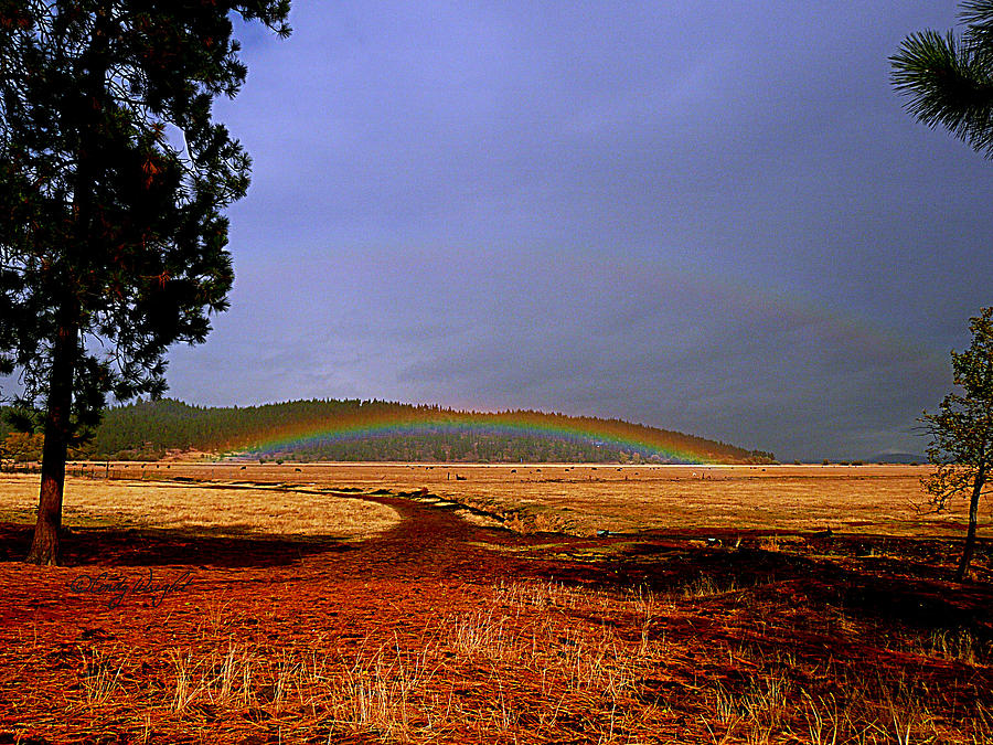 Cindy Photograph - Double Rainbow Ridge by Cindy Wright