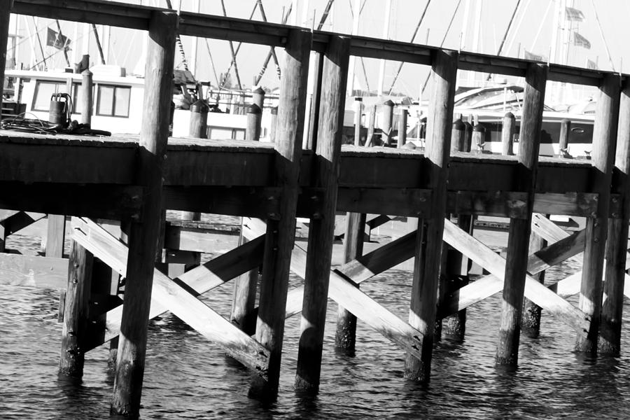 Palmetto Photograph - Down By The Marina by Nicholas Evans
