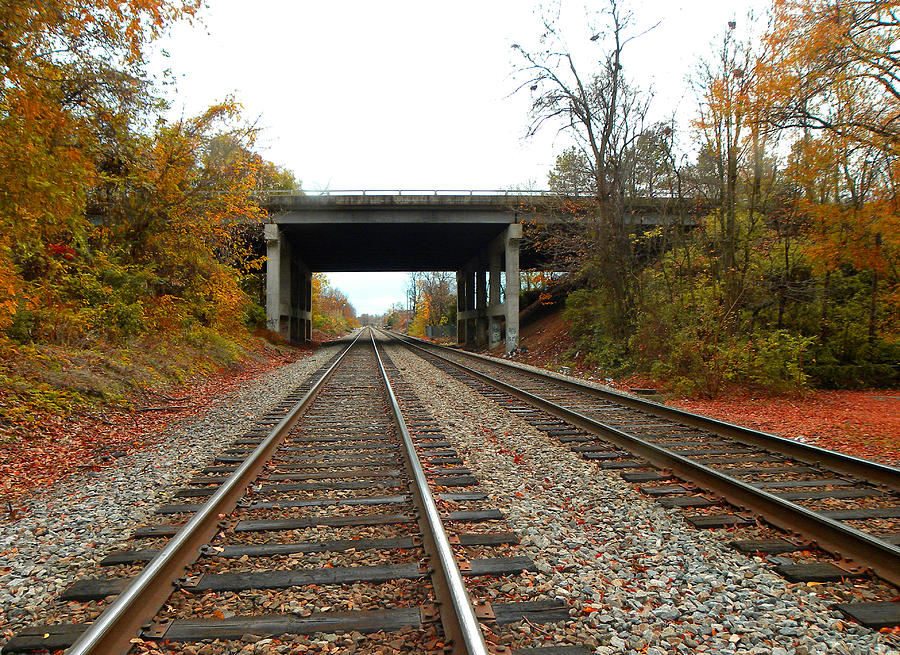 Railroad Tracks Photograph - Down The Lines by Sandi OReilly