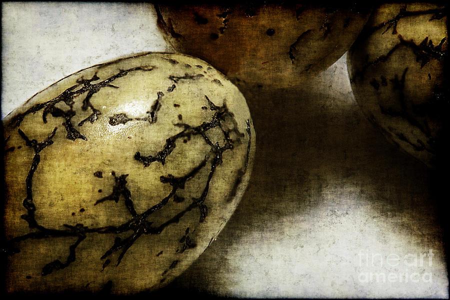 Dragon Photograph - Dragon Eggs by Judi Bagwell