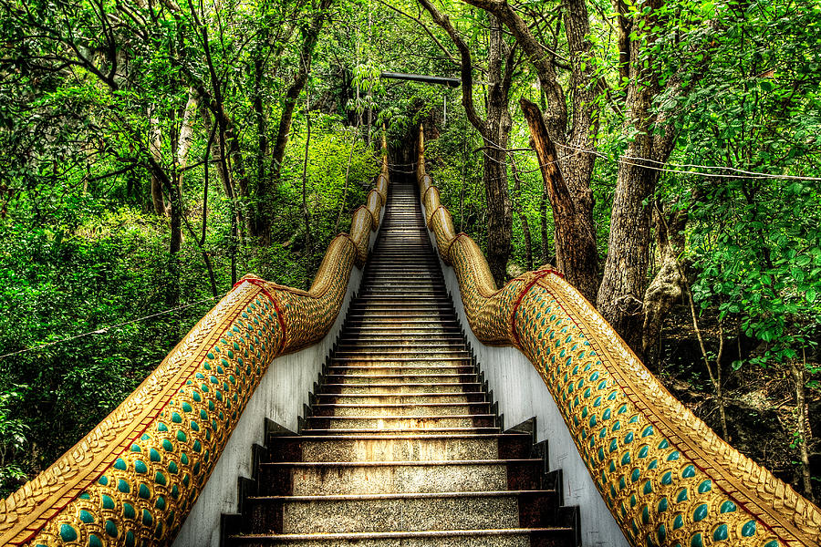 Hdr Photograph - Dragon Steps by Adrian Evans