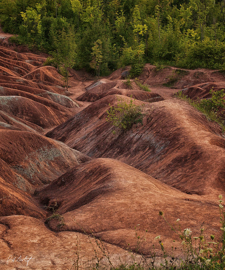 Caledon Ontario Photograph - Drainage by Phill Doherty