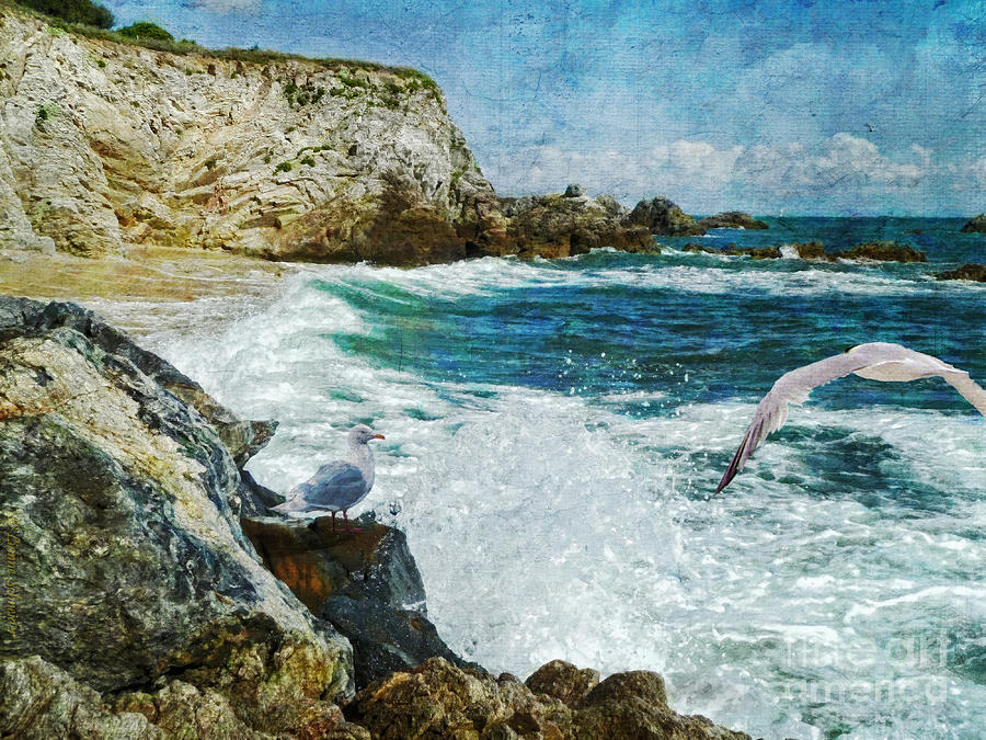 Seascapes Digital Art - Dreamer Dream No More by Lianne Schneider