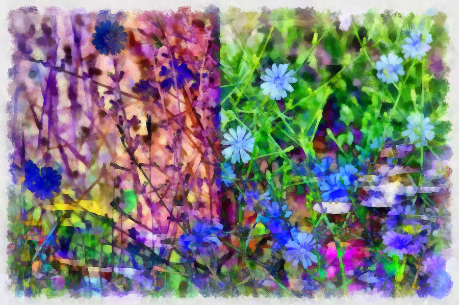 Abstract Photograph - Dreaming Night And Day by Angelina Vick